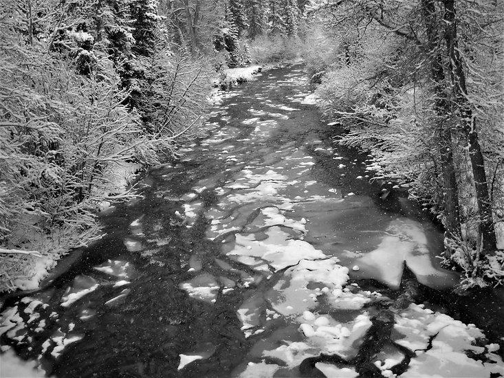 creek 3 (2).JPG