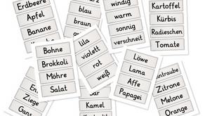 Wortkarten für den DaZ-Unterricht