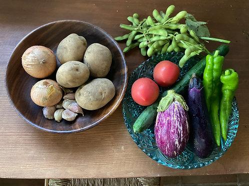 無農薬 無化学肥料 動物性堆肥不使用 オーガニック野菜