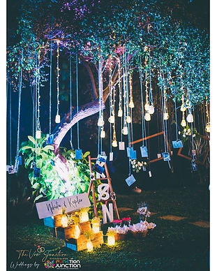 best wedding planner in goa
