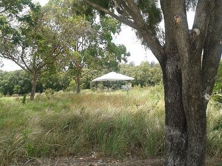 QLD6709-05-Bill Benham Park.jpg