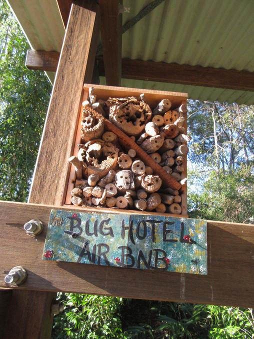 Koala Park community garden, Moorooka
