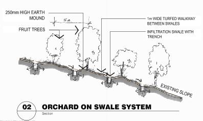 Burnie Brae Community Garden - swale detail