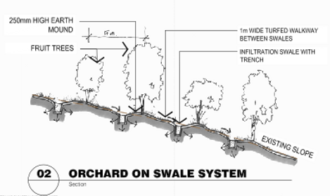 BBswaleelevation.png