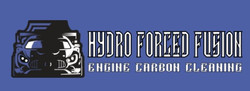 Hydro Forced Fusion