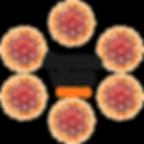 Coronavirus-1_medium.png