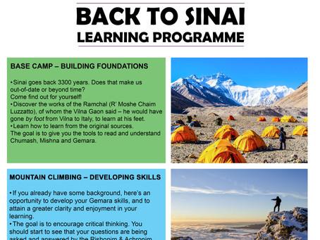 Back to Sinai Programme