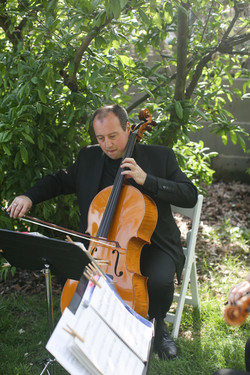 Trio Laurel Court Tom playing
