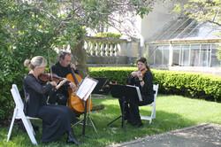Trio Laurel Court 1