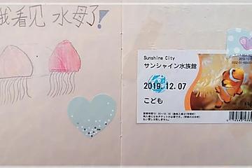 12月7号水族馆的收获