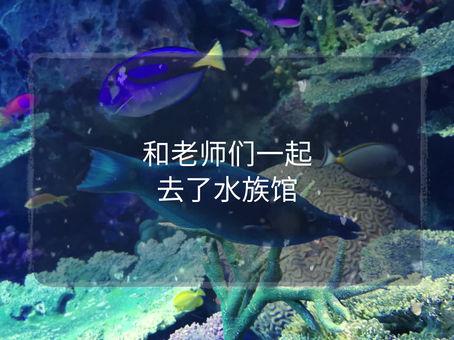 12/7(土)水族館へ行ってきました!楽しかった💛