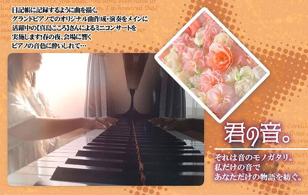 16749809_p7.jpg