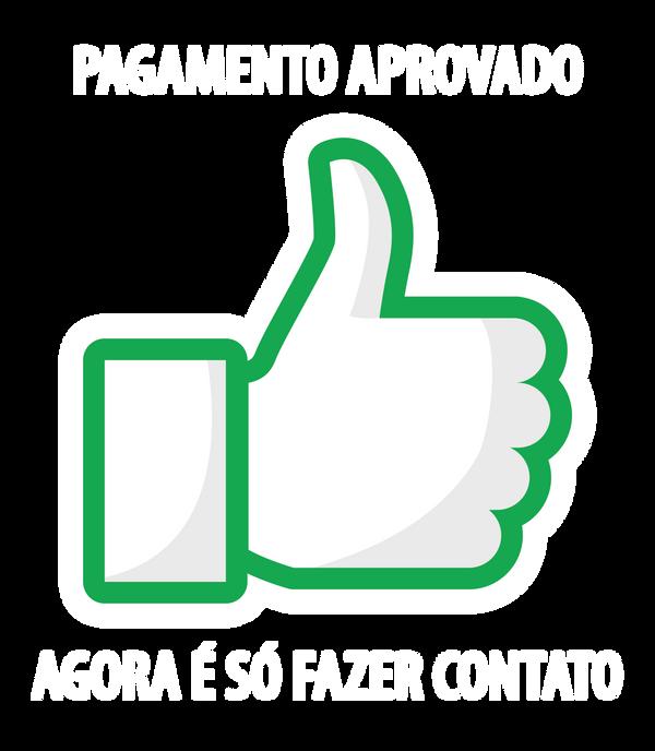 PAGAMENTO APROVADO-01.png