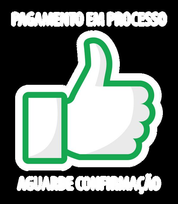 EM PROCESSO-01.png