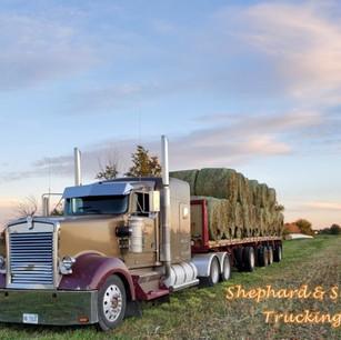 shephard trucking.jpg