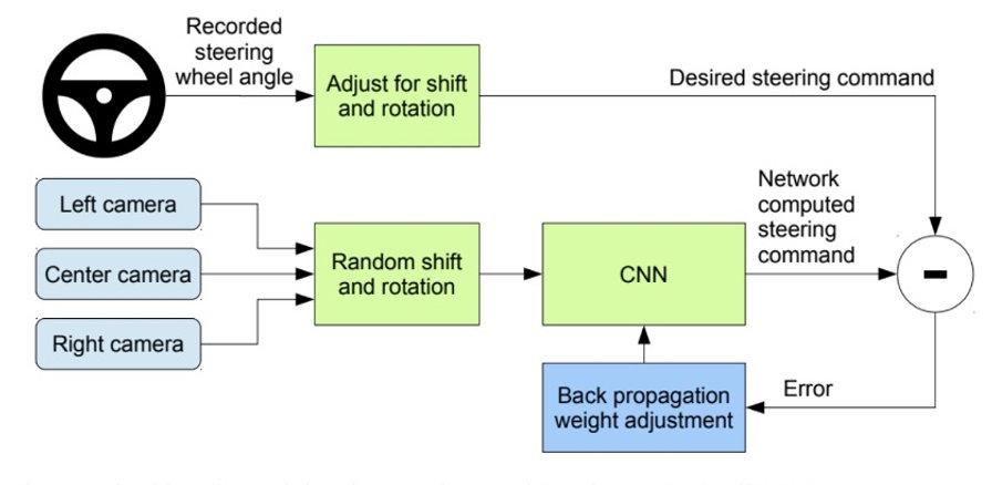 Fig 1.jpg