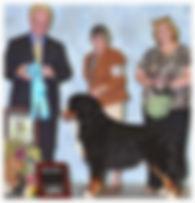 Best dog groomer in Steamboat Springs, Best Pet groomer in town Steamboat Springs, Award of Merit BMDCR 2013 Regional Specialty