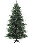 Christmas Tree Tall