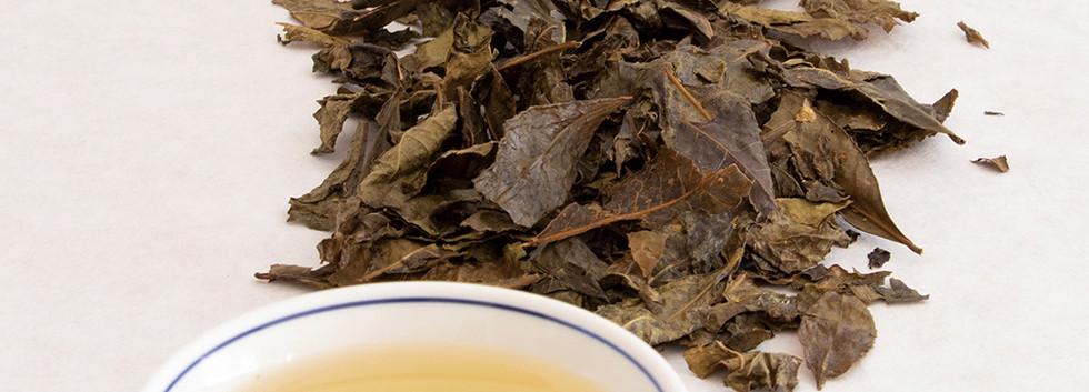 相生晩茶-1r.jpg