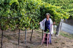 Rabbi in the Vineyard.jpg