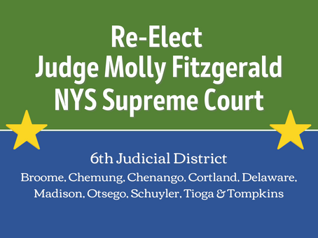 Justice Molly Fitzgerald announces bid for re-election to New York State Supreme Court