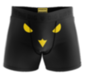 DIG boxers 4.png