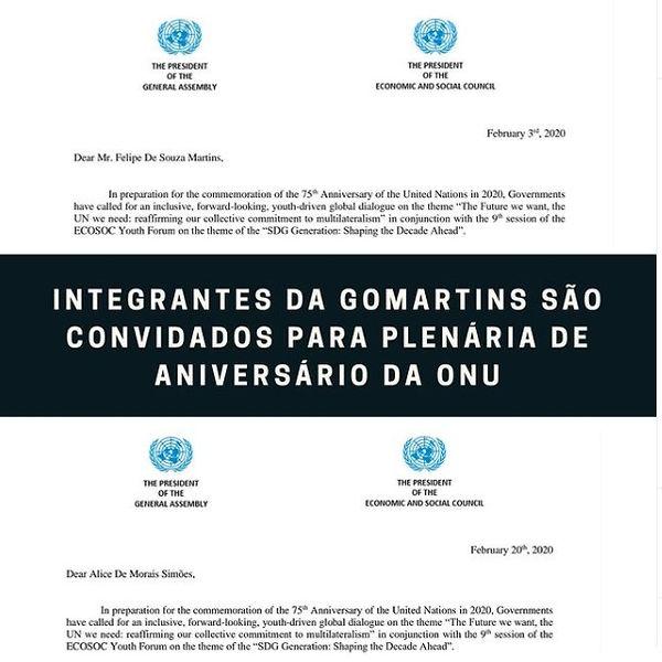 ONU 2.jpg