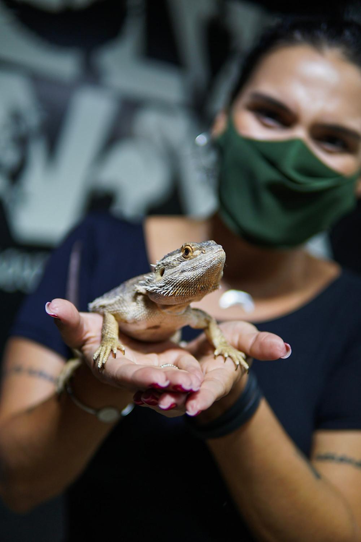 Alice Morais segura lagarto durante visita no projeto selva viva.