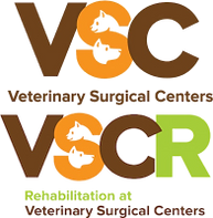 VSC and VSCR stacked logo.PNG