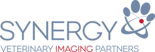 synergy-logo.PNG