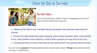 survey graphic.PNG