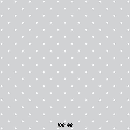 100-48