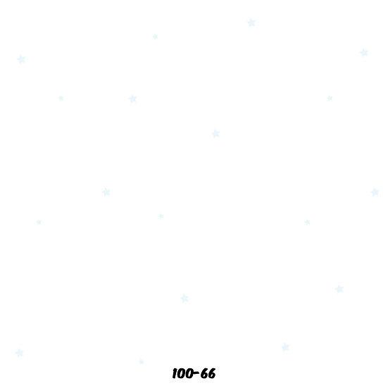 100-66