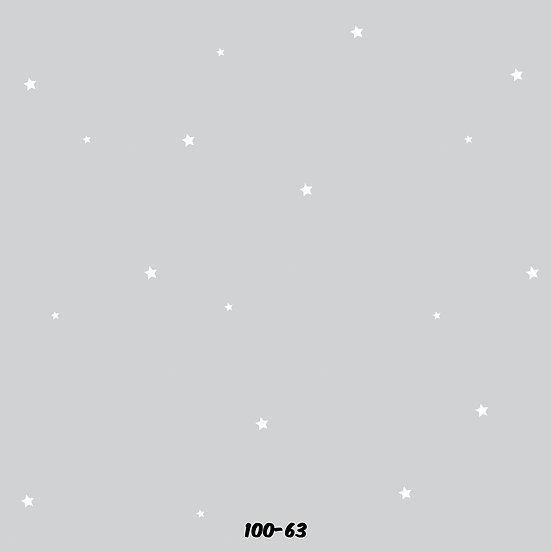 100-63