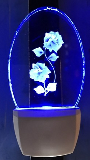 ROSES NIGHT LIGHT