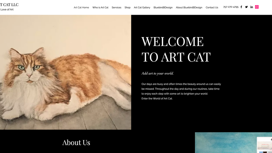 Art Cat Rocks