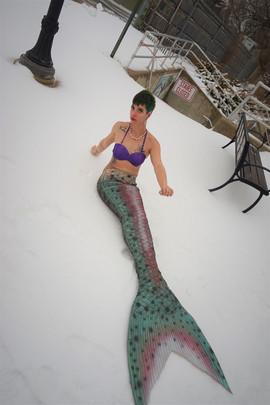 snowmaid1.jpg