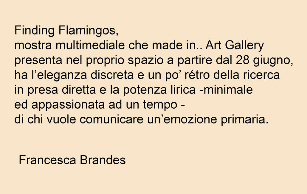 Critica d'arte Francesca Brandes