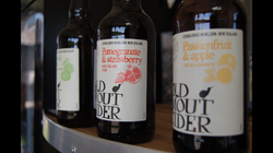 Our favourite cider