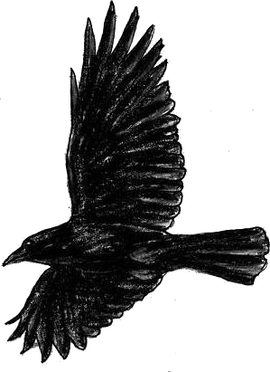 flying crow.png
