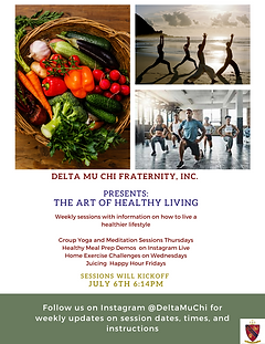DMX Wellness Series (1).png