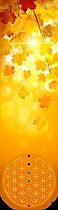 AUTOMNE Marques-pages livre - Carré plastifié Fleur de vie Métatron géométrie sacrée planches modèles cadres soins énergétiques minéraux pendule lithothérapie naturopathie gemmothérapie 7 chakras alignement pierre recharger cristaux nettoyer purifier purification énergies Méditation vibration bien-être radionique radiesthésie stickers poster autocollant dessin set de table bienfaits égypte produits énergétiques divination divinatoire cadran animaux 7 chakras alignement décoration
