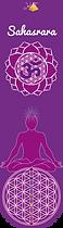 COURONNE chakras Marques-pages livre - Carré plastifié Fleur de vie Métatron géométrie sacrée planches modèles cadres soins énergétiques minéraux pendule lithothérapie naturopathie gemmothérapie 7 chakras alignement pierre recharger cristaux nettoyer purifier purification énergies Méditation vibration bien-être radionique radiesthésie stickers poster autocollant dessin set de table bienfaits égypte produits énergétiques divination divinatoire cadran animaux 7 chakras alignement décoration