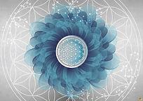 Poster 1 - A4 - Fleur Bleue WEB.jpg