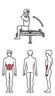 herkules fitness sunshine picto