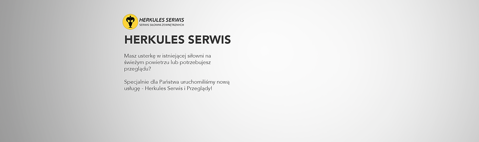 serwis.png