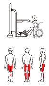 PMR_Biceps_picto.jpg