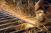 Progression et finitions en métallerie