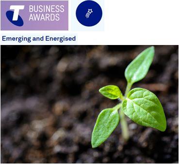Emerging and energised - telstra business awards