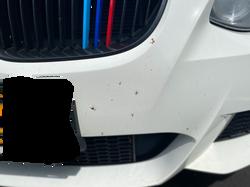 BMW B3